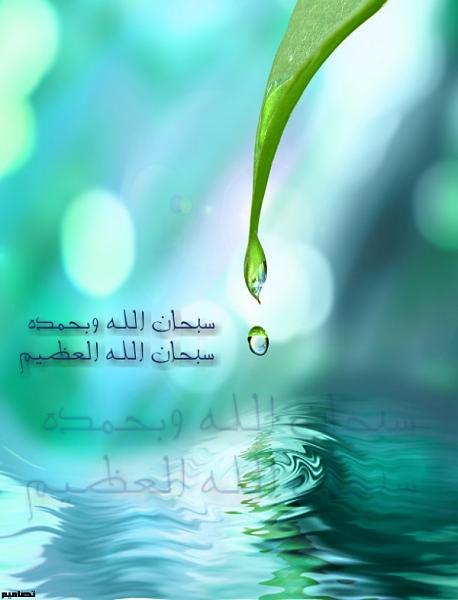 الاسلامية 2015 21706alsh3er.png