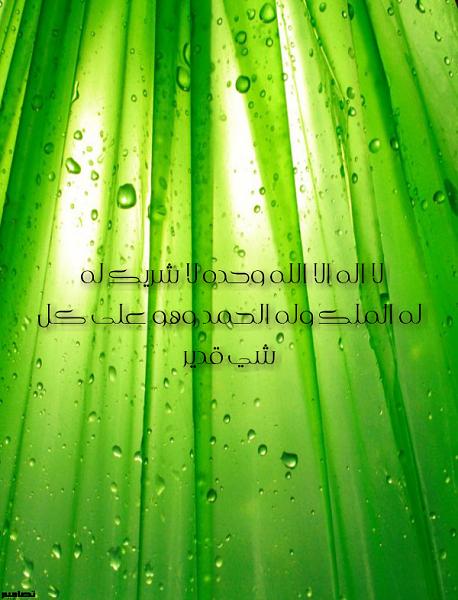 الاسلامية 2015 21709alsh3er.png
