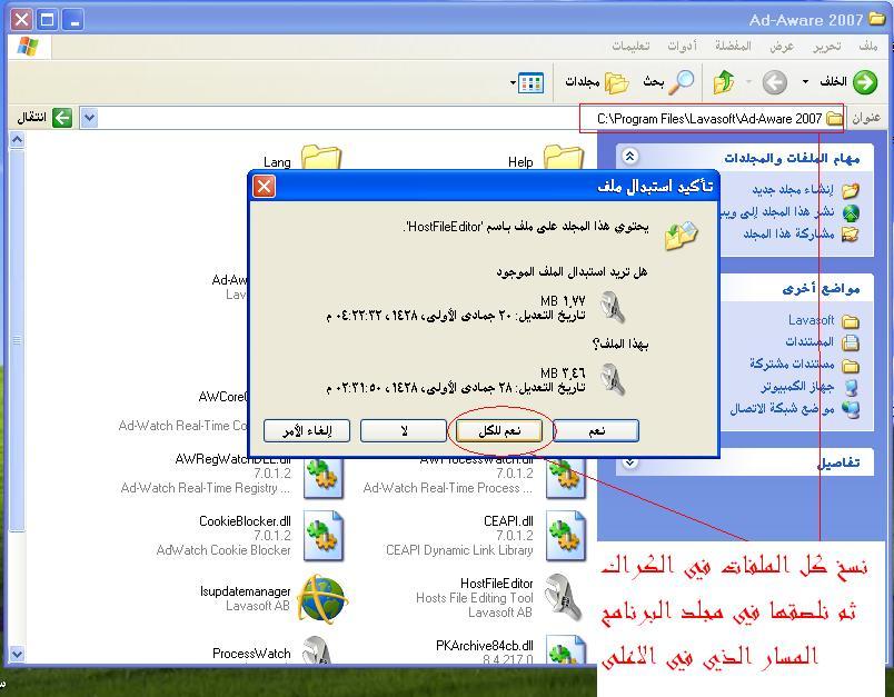 الفيروسات 2008 بكراكاتها وسيريلاتها 4766.imgcache